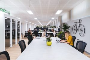 office with employees working at desks